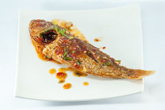 Ryba nakrywająca z kraszonym Tajlandzkim chili Zdjęcie Stock