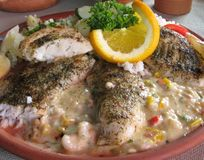 ryba piec na grillu Fotografia Stock