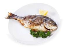 ryba piec na grillu cytryny pietruszka Obraz Royalty Free