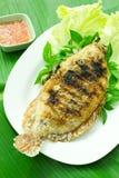 Ryba piec na grillu z solą w talerzu, Tajlandzki jedzenie styl Zdjęcie Royalty Free