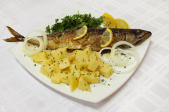 ryba smażąca makrela fotografia stock