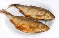 ryba smażąca rzeka Obraz Stock