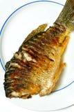 ryba smażył Obraz Stock