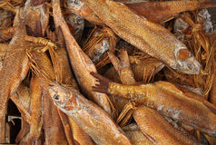 ryba wysuszona sól Obrazy Stock