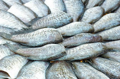 ryba wysuszona sól Zdjęcia Royalty Free