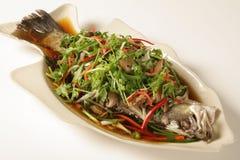 Ryba z soja kumberlandem Zdjęcie Stock