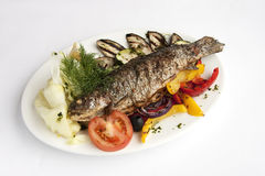 Ryba z warzywami Fotografia Royalty Free