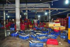 Ryba zbierają i sortują w kosze zanim ładujący na ciężarówce przy Hon Ro portem morskim, Nha Trang miasto Zdjęcia Royalty Free