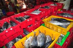 Ryba zbierają i sortują w kosze zanim ładujący na ciężarówce przy Hon Ro portem morskim, Nha Trang miasto Fotografia Stock