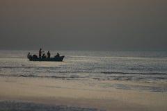 rybacy muszkatołowi Zdjęcie Royalty Free