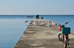 Rybacy na molu Zdjęcie Stock