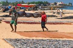 Rybacy niesie ryba w koszach Obrazy Royalty Free