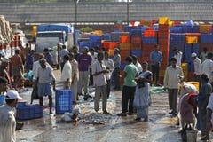 Rybacy przenosi świeżego chwyta od łodzi dla drogowego transportu, Mangalore, Karnataka, India zdjęcia royalty free