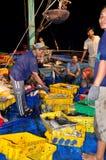 Rybacy są zbierający rybołówstwo i sortujący po długiego dnia połowu w Hon Ro porcie morskim, Nha Trang miasto Zdjęcia Royalty Free