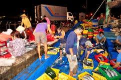 Rybacy są zbierający rybołówstwo i sortujący po długiego dnia połowu w Hon Ro porcie morskim, Nha Trang miasto Obraz Royalty Free
