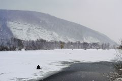 Rybak na lodzie Zdjęcia Stock