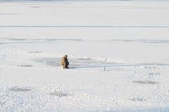 Rybak na zima mroźnym dniu zdjęcie royalty free