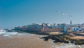 Rybak łodzie w Essaouira porcie, Maroko Zdjęcie Royalty Free