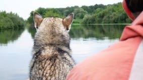 Rybak z łuskowatym psem w łodzi z powrotem widoku zdjęcie wideo