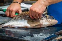 Rybaka otwarcia ryba Zdjęcia Stock