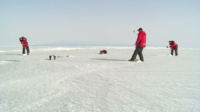 rybaka ryba target985_1_ dziury lodu zima zbiory wideo