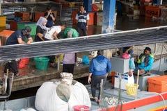 Rybaka sprzedawania ryba przy molem obraz royalty free