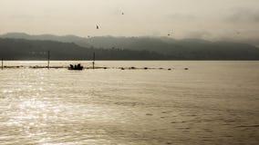 Rybaka wp8lywy ryba od sieci Fotografia Royalty Free
