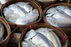 rybi świeżego rynku tuńczyk Obrazy Stock