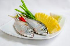 rybi świeży morze Obrazy Stock