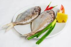 rybi świeży morze Zdjęcia Stock