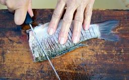 rybi świeży narządzanie Obraz Royalty Free