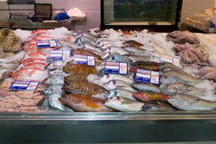 rybi świeży rynek Fotografia Stock