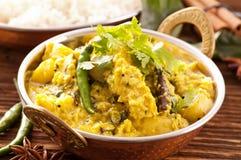 Rybi curry Obraz Royalty Free