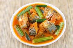 Rybi curry Fotografia Stock