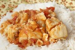 Rybi curry'ego posiłku zbliżenie Fotografia Royalty Free