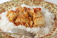 Rybi curry'ego posiłek z rozwidleniem Zdjęcia Stock