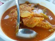 Rybi curry z bambusowym krótkopędów, kwaśnego i korzennego smakiem, jest południowym jedzeniem, kraj Tajlandia zdjęcia stock