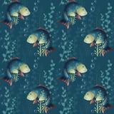 rybi deseniowy bezszwowy Podwodny świat, crucian karp i algi na błękitnym tle, karp royalty ilustracja