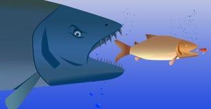 Rybi drapieżnik ilustracja wektor