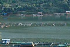 Rybi gospodarstwa rolne wzdłuż Czerwonej Rzecznej Juan rzeki, Yunnan, Chiny fotografia royalty free
