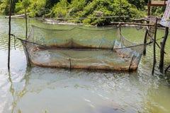 Rybi gospodarstwo rolne dla rosnąć w otwartej wodzie Obraz Royalty Free