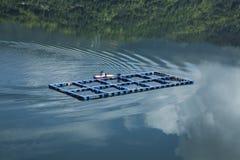Rybi gospodarstwo rolne przy Yulong jeziorem w Zhejiang Wenzhou Obraz Stock