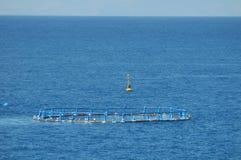 Rybi gospodarstwo rolne w Atlantyckim oceanie Obrazy Stock