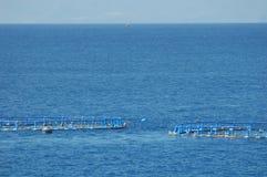 Rybi gospodarstwo rolne w Atlantyckim oceanie Zdjęcie Stock
