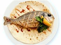 Rybi jedzenie Zdjęcia Royalty Free