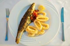 Rybi jedzenie zdjęcie royalty free