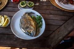 Rybi jedzenie na bielu talerzu z cytryną Zdjęcia Stock