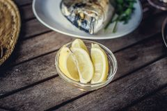 Rybi jedzenie na bielu talerzu z cytryną Fotografia Stock