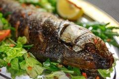 Rybi jedzenie z warzywami i cytryną Zdjęcie Royalty Free