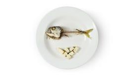 Rybi kośca i odrobiny foods na talerzu zdjęcie royalty free
